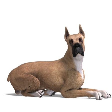 great dane: Great Dane Dog. 3D rendering with shadow over white Stock Photo