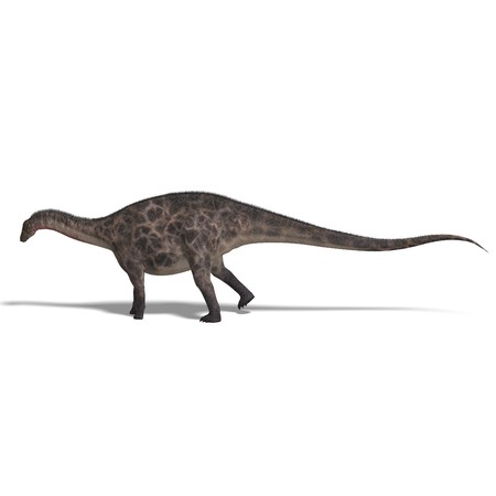lop: Dinosaur Dicraeosaurus. 3D rendering with shadow over white