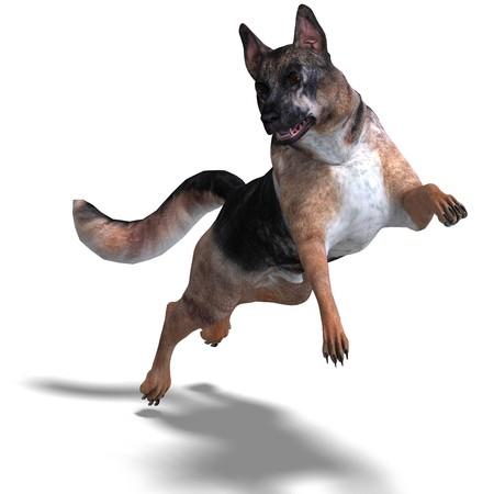 German Shepherd Dog.  photo