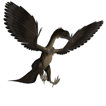 enormous: Dinosaur Archaeopteryx