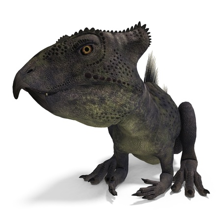 crouch: Dinosaur Archaeoceratops. 3D rendering and shadow over white Stock Photo
