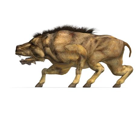 assail: Dinosaur Daeodon Dinohyus
