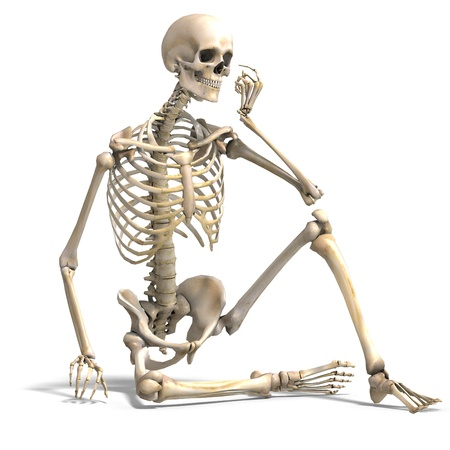 mental object: anatomical correct male skeleton  Stock Photo