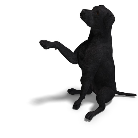 begging: Labrador Retriever Dog. 3D rendering with   shadow over white Stock Photo