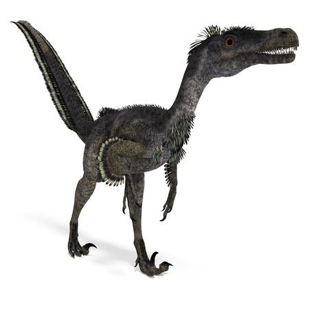 Velociraptor de dinosaurio. Procesamiento de 3D con sombra sobre blanco Foto de archivo