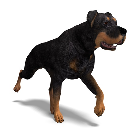 lop: Rottweiler Dog. 3D rendering with   shadow over white Stock Photo