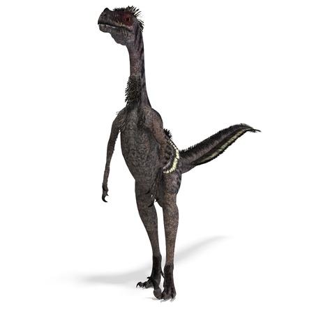 carefulness: Dinosaur Velociraptor. 3D rendering with shadow over white