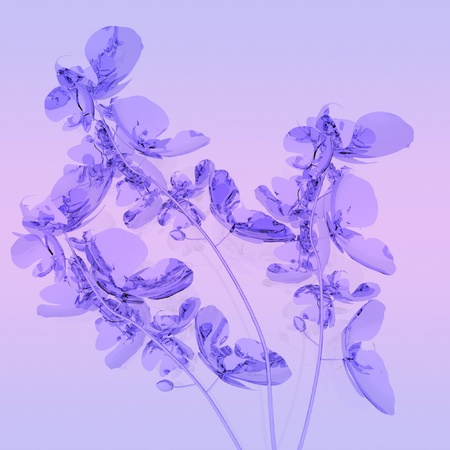 purple orchids on lilac background photo