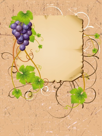 vector frame with vine Vector