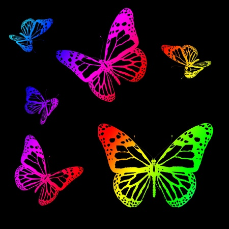 Silhouettes of butterflies on a black background photo