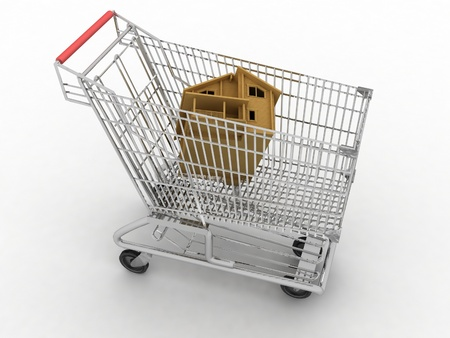 light cart of supermarket with the model of house photo