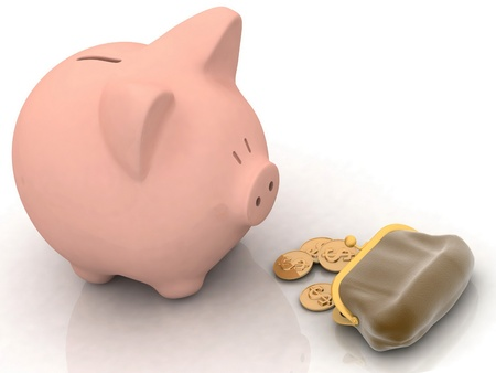 piggy banks look at a purse with chinks photo