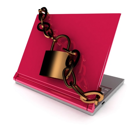 Notebook security Stock Photo - 12050719