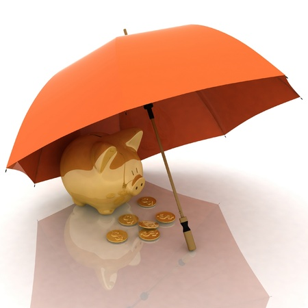accumulations: umbrella and piggy-bank. conception of defence of financial accumulations