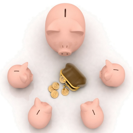 chinks: large and little piggy banks look at a purse with chinks
