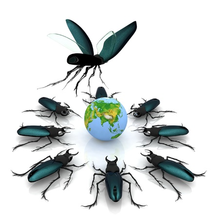 beetles attacking the earth photo