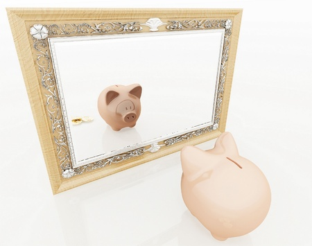 Piggy at the mirror photo