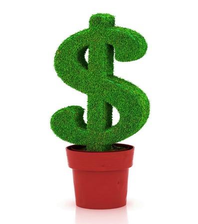 grass font: sign of dollar, growing in a flowerpot