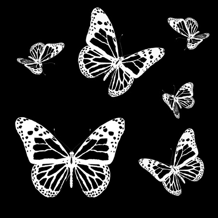 aerials: Silhouettes of butterflies on a black background Stock Photo