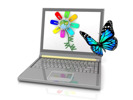 The butterfly flying to an attractive picture on the laptop screen photo