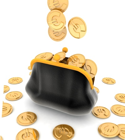 empty wallet: Purse