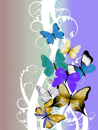 beautiful illustration with colorful butterflies illustration