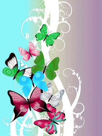 hermosa ilustraci�n con mariposas de colores photo
