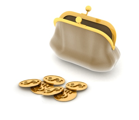 3D an illustration of a purse and money illustration