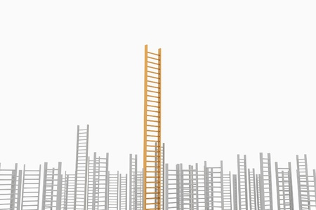 permanence: Ladder leader, as a concept idea of success and permanence