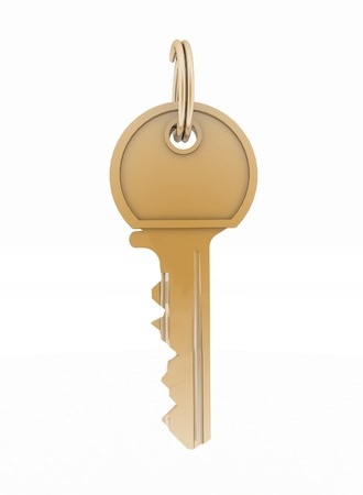in copula: Key from house isolated on white background