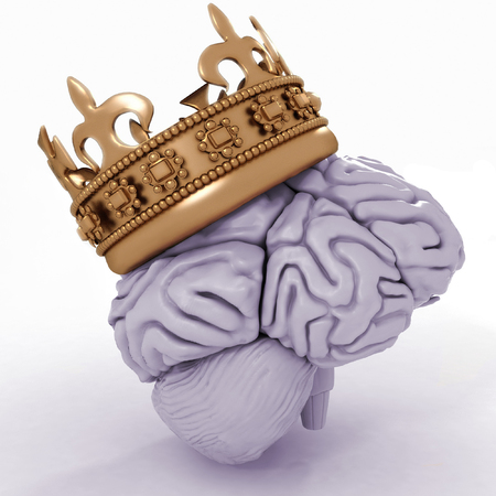 brainy: Brain with crown on a white background