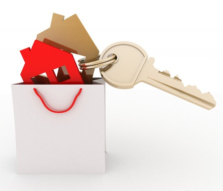 residency: 3d model house symbol set in a paper shopping bag Stock Photo