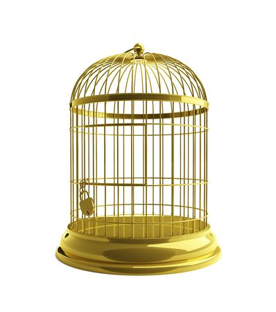 cage for birds gold photo