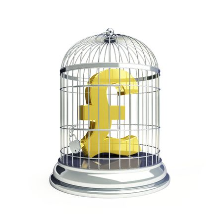 pound in a cage for birds photo