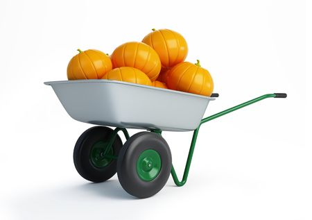 wheelbarrow pumpkins isolated on a white background  Stock Photo - 7685732