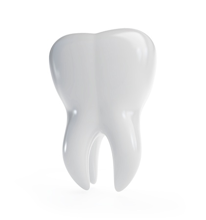 tooth root: 3d tooth is isolated on a white background Stock Photo