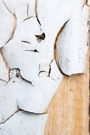 old wooden wall with white paint photo