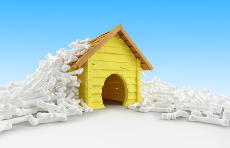 nibble: dog house many bones on a white background Stock Photo