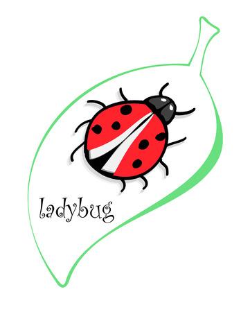 lady bug: Cute colorful ladybugs clip art isolated on white background