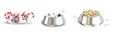 nibble: Metall dog dish and bone set on a white background 3D illustration