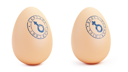 fragility: Baby boy and girl egg on a white background 3D illustration Stock Photo