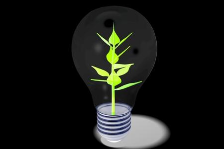 3D ecology concept