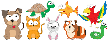 Animals - funny vector pets (dog, cat, turtle, goldfish, rabbit, guinea pig, snake, parrot) Stock Illustratie