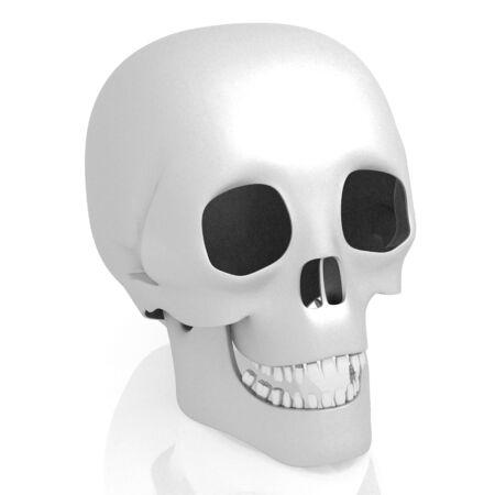 3D human skull on white background Banco de Imagens