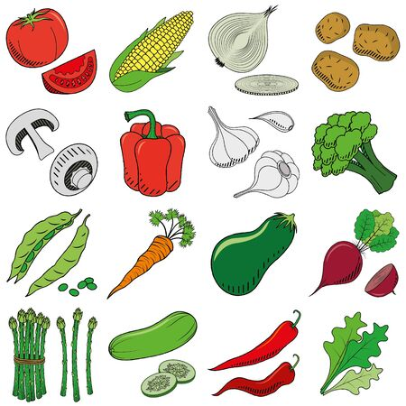 Vegetables (set) - clipart illustration