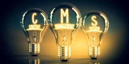 CMS, content management system concept - shining light bulbs - 3D illustration Stockfoto