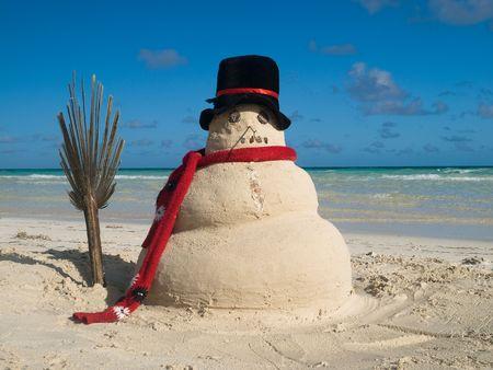 SNOWMAN ON THE BEACH photo