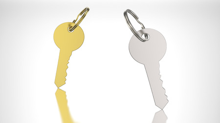 lock symbol: 3D illustration gold and silver key with keychain on a grey background Stock Photo