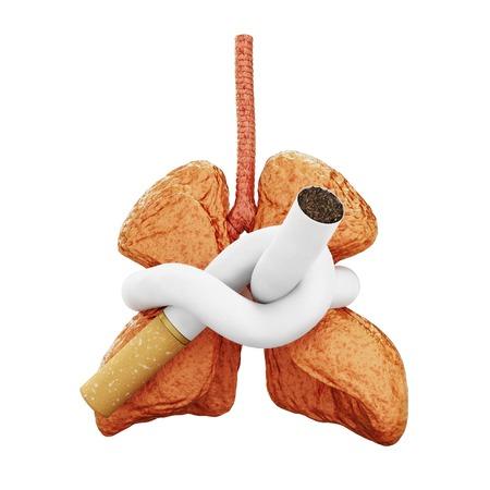 no fumar: pulm�n amenazados Foto de archivo