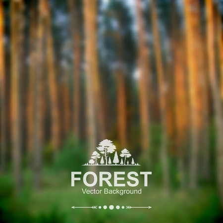 Vector blurred forest background